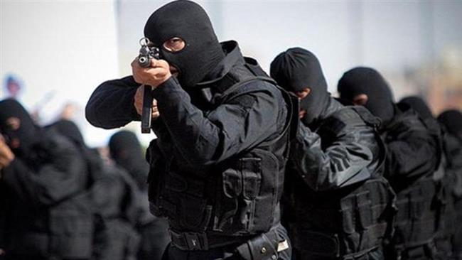 File photo shows Iranian security forces.